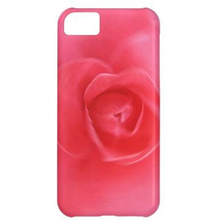 hermoso diseño radial color de rosa del arte del r