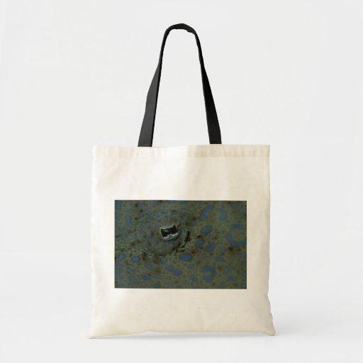 Hermoso el ojo inusual de una platija del pavo rea bolsas