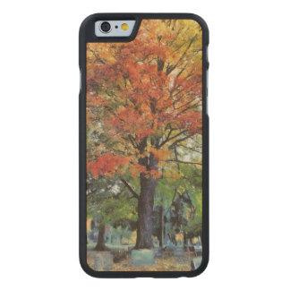 Hermoso flameando el árbol de arce rojo y funda de iPhone 6 carved® de arce