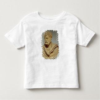 Herodes Atticus, marble head, Roman, 101-80 AD, pr T Shirt