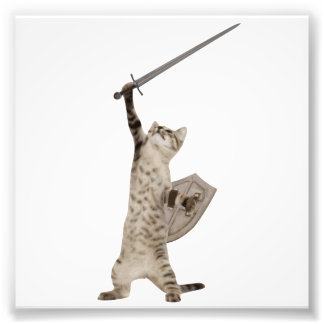 Heroic Warrior Knight Cat Photo Print