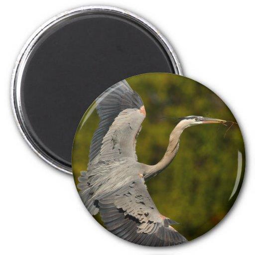 heron 2 inch round magnet