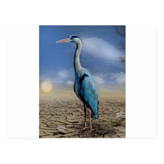 heron-684 postales