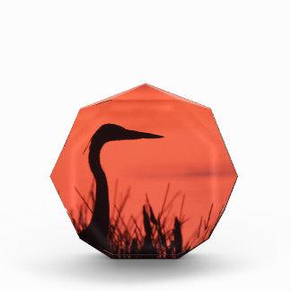heron acrylic award