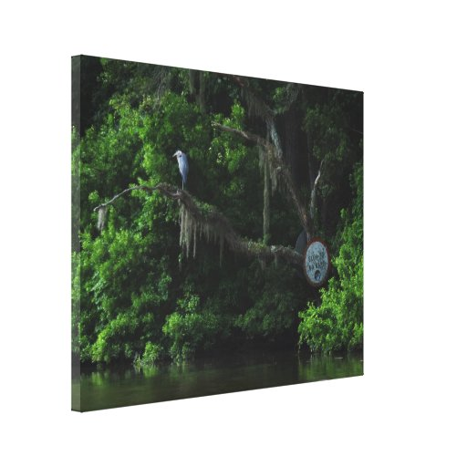 Heron  and Lazy River Canvas Print