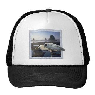 Heron Beach Mesh Hat