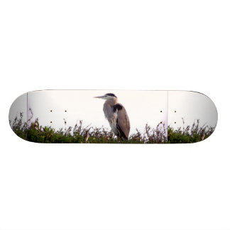 Heron Bird Wildlife Animals Wetlands Skateboard Deck
