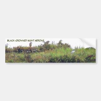 Heron Birds Wildlife Animals Wetlands Bumper Sticker