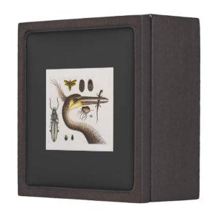 Heron & Bugs Art Premium Gift Box