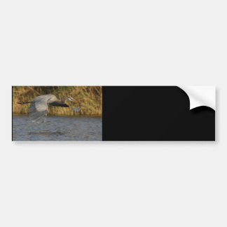 Heron Bumper Sticker