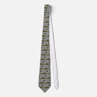 Heron Chick Neck Tie