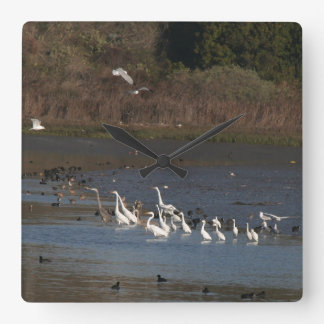 Heron & Egret Birds Wildlife Animal Photography Square Wall Clock