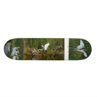 Heron, Egret & Pelicans Skateboard.