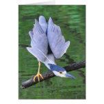Heron Fishing Greeting Cards