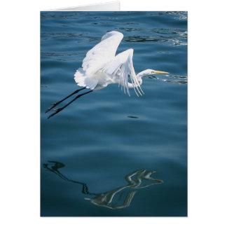 Heron Flight Greeting Card