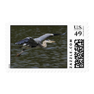 Heron Fly Past Postage
