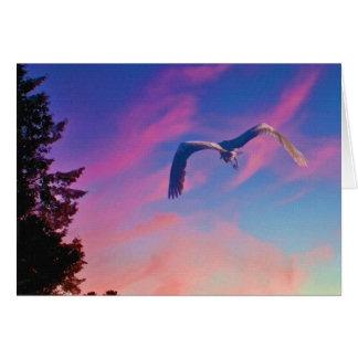 Heron Flying at Sunset Card