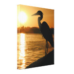 Heron Gallery Wrapped Canvas