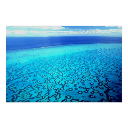 Heron Island Reef Poster