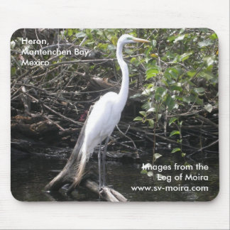 Heron, Mantenchen Bay, Mexico Mouse Pad