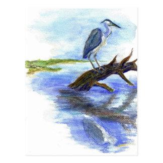 Heron Meditating - Watercolor Pencil Postcard