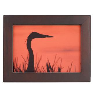 heron memory box