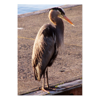 Heron On Dock Large Business Cards (Pack Of 100)