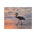 Heron on early morning walk stretched canvas print