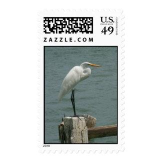 Heron on Piling Stamp
