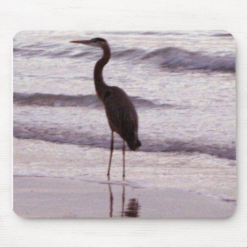 Heron on the Beach - Florida Mousepads