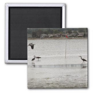 Heron Party 2 Inch Square Magnet
