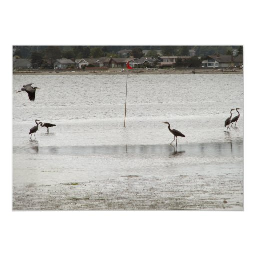 Heron Party 5x7 Paper Invitation Card