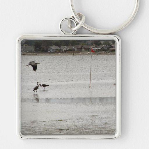 Heron Party Silver-Colored Square Keychain