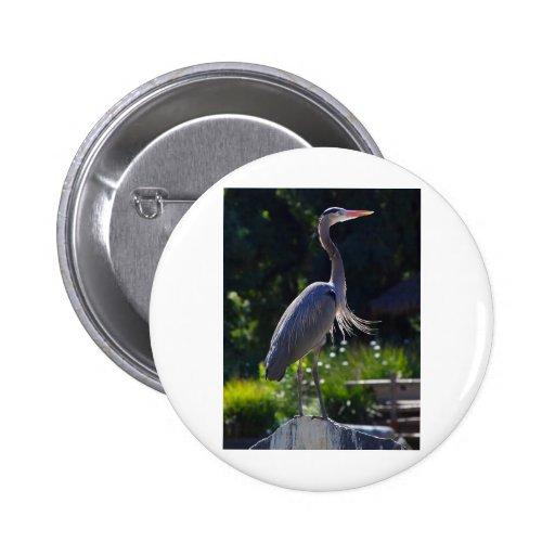 heron pinback button