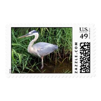 Heron Profile Postage Stamps