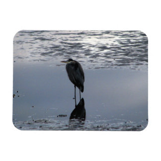Heron Reflected Magnet