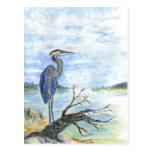 Heron Sentry - Watercolor Pencil Postcard