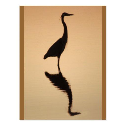 Heron Silhouette Postcards
