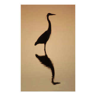 Heron Silhouette Poster