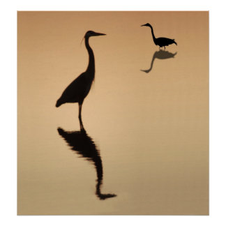 Heron Silouette Print