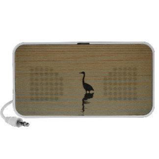 Heron Speaker