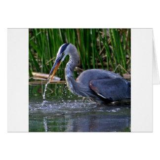 Heron Splash Greeting Cards