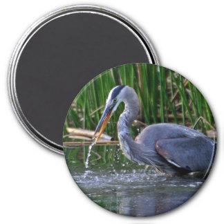 Heron Splash Refrigerator Magnets
