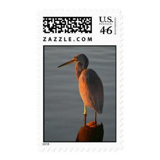 Heron Stamp