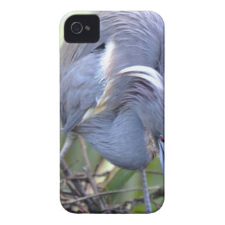 Heron Strengthening Her Nest iPhone 4 Cover