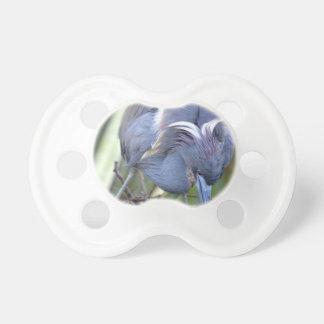 Heron Strengthening Her Nest Pacifier
