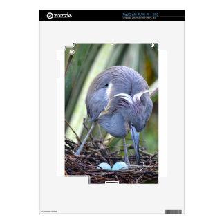 Heron Strengthening Her Nest Skins For iPad 2