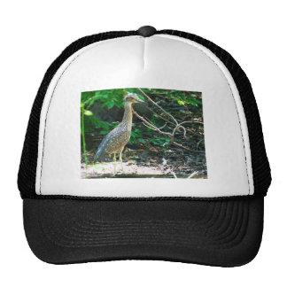 heron trucker hat