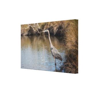 Heron Wall Canvas