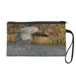 Heron with Fish Wristlets
